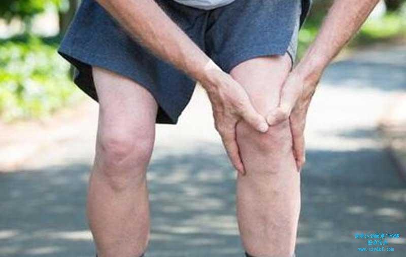右膝髌尖末端病;半月板损伤